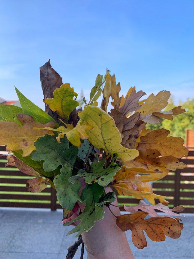 есенни-листа